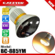 IP Camera Bulb (Spycam)